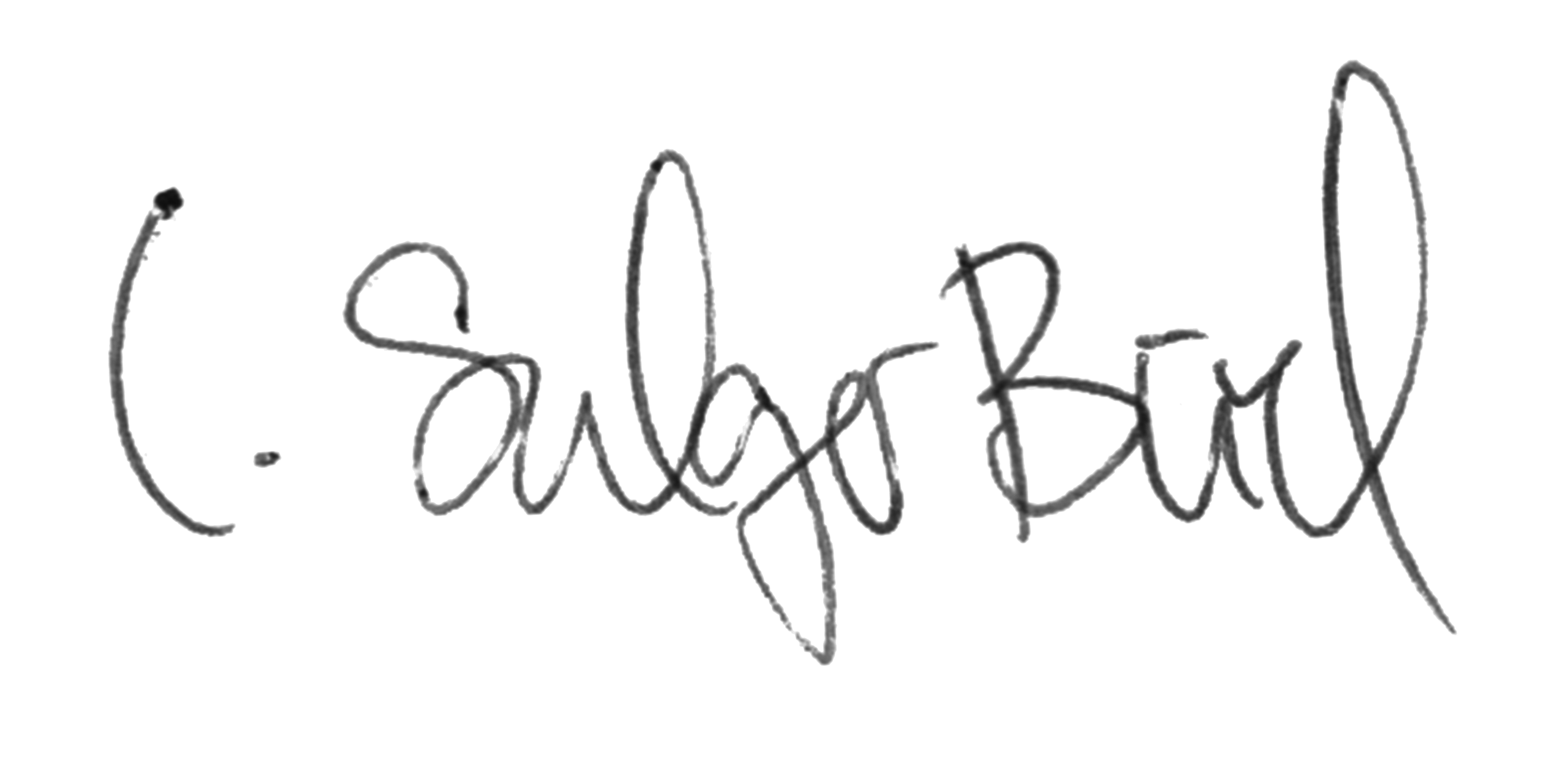 Schrift Isabel Sulger Büel